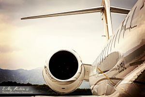 global6000-brown.jpg